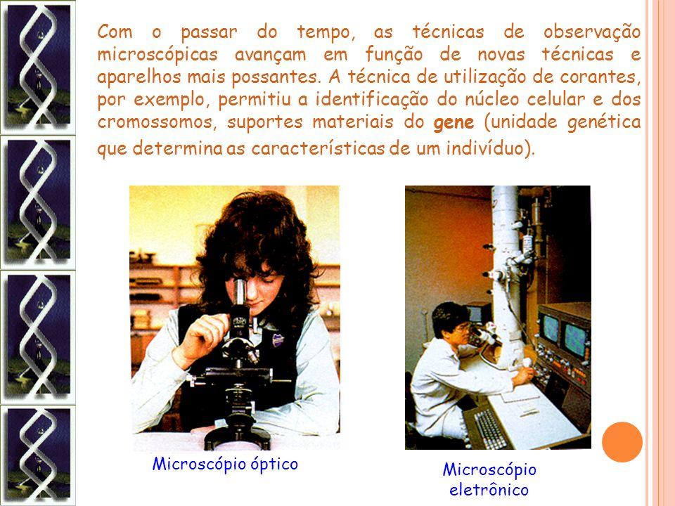 Com o passar do tempo, as técnicas de observação microscópicas avançam em função de novas técnicas e aparelhos mais possantes. A técnica de utilização