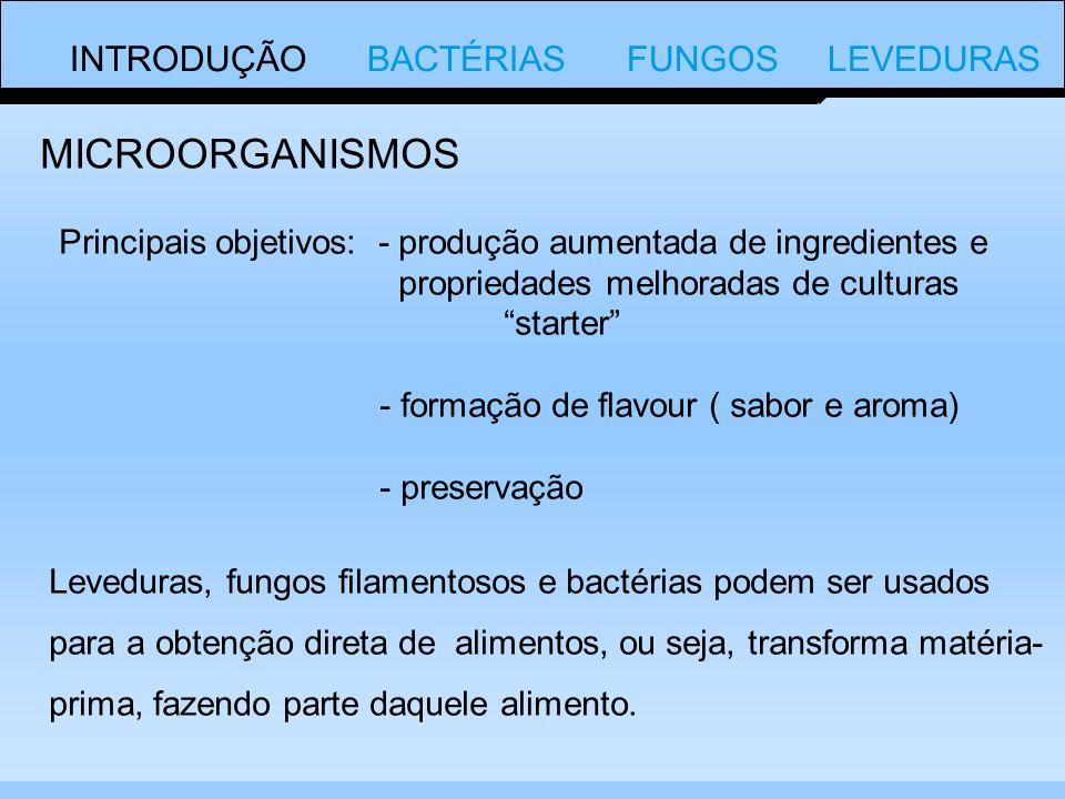 INTRODUÇÃO BACTÉRIAS FUNGOS LEVEDURAS OS FUNGOS SÃO DIVIDOS EM: Basideomecetos Ascomicetos Ficomicetos DIVISÃO