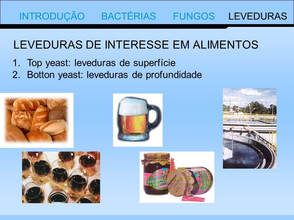 INTRODUÇÃO BACTÉRIAS FUNGOS LEVEDURAS 1.Top yeast: leveduras de superfície 2.Botton yeast: leveduras de profundidade LEVEDURAS DE INTERESSE EM ALIMENTOS