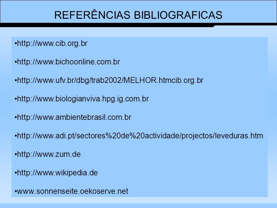 REFERÊNCIAS BIBLIOGRAFICAS http://www.cib.org.br http://www.bichoonline.com.br http://www.ufv.br/dbg/trab2002/MELHOR.htmcib.org.br http://www.biologianviva.hpg.ig.com.br http://www.ambientebrasil.com.br http://www.adi.pt/sectores%20de%20actividade/projectos/leveduras.htm http://www.zum.de http://www.wikipedia.de www.sonnenseite.oekoserve.net