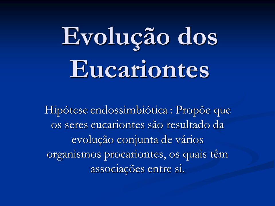 Evolução dos Eucariontes Hipótese endossimbiótica : Propõe que os seres eucariontes são resultado da evolução conjunta de vários organismos procariontes, os quais têm associações entre si.
