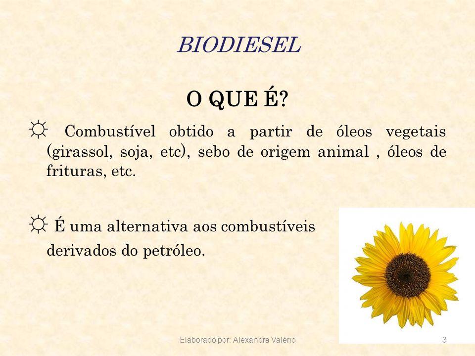 BIODIESEL O QUE É? Combustível obtido a partir de óleos vegetais (girassol, soja, etc), sebo de origem animal, óleos de frituras, etc. É uma alternati