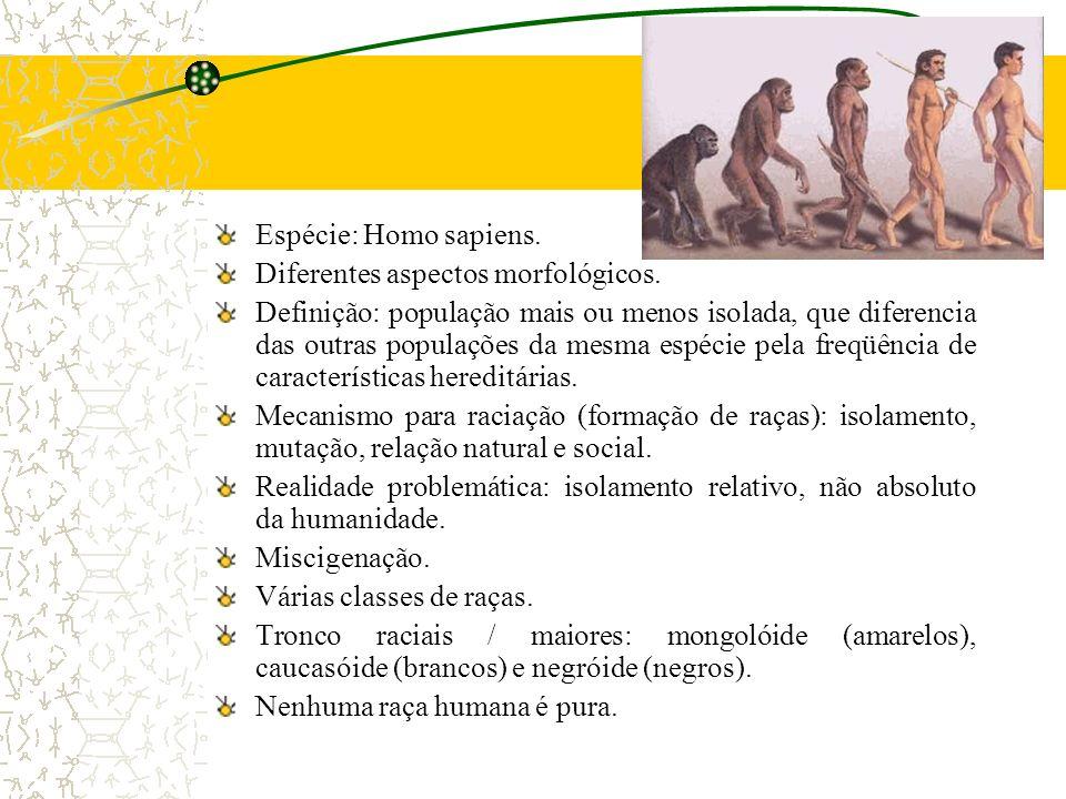 Espécie: Homo sapiens. Diferentes aspectos morfológicos. Definição: população mais ou menos isolada, que diferencia das outras populações da mesma esp