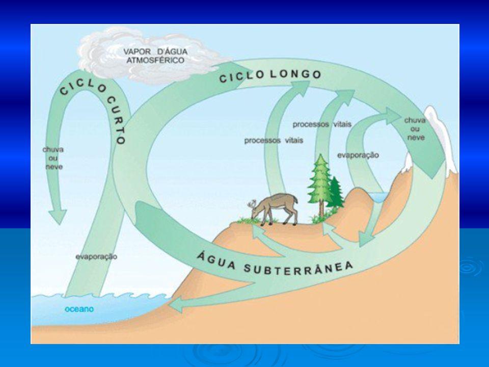 Por onde se distribui a água do planeta.