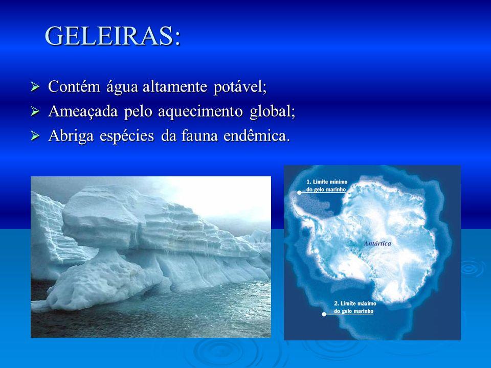 Contém água altamente potável; Contém água altamente potável; Ameaçada pelo aquecimento global; Ameaçada pelo aquecimento global; Abriga espécies da f