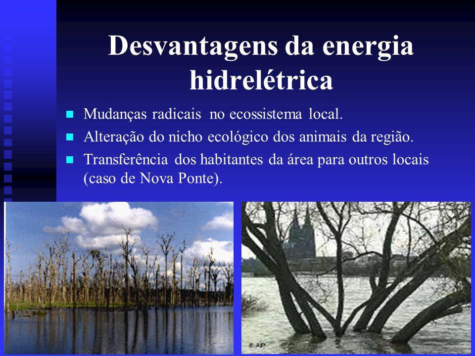 Desvantagens da energia hidrelétrica Mudanças radicais no ecossistema local.
