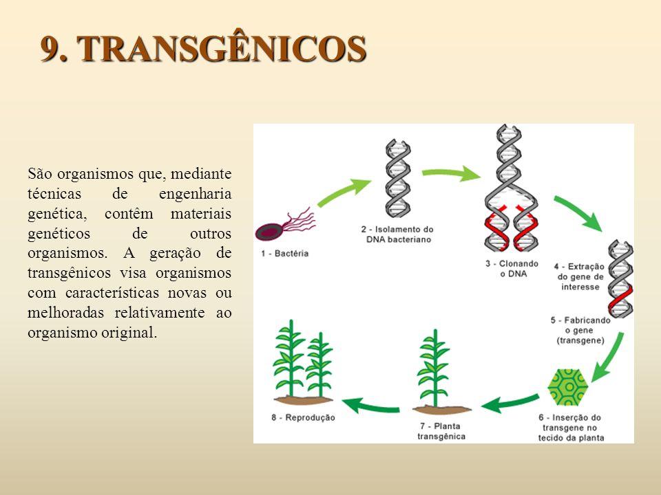9. TRANSGÊNICOS São organismos que, mediante técnicas de engenharia genética, contêm materiais genéticos de outros organismos. A geração de transgênic
