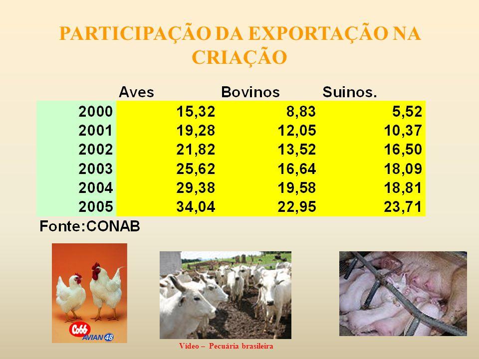 PARTICIPAÇÃO DA EXPORTAÇÃO NA CRIAÇÃO Vídeo – Pecuária brasileira