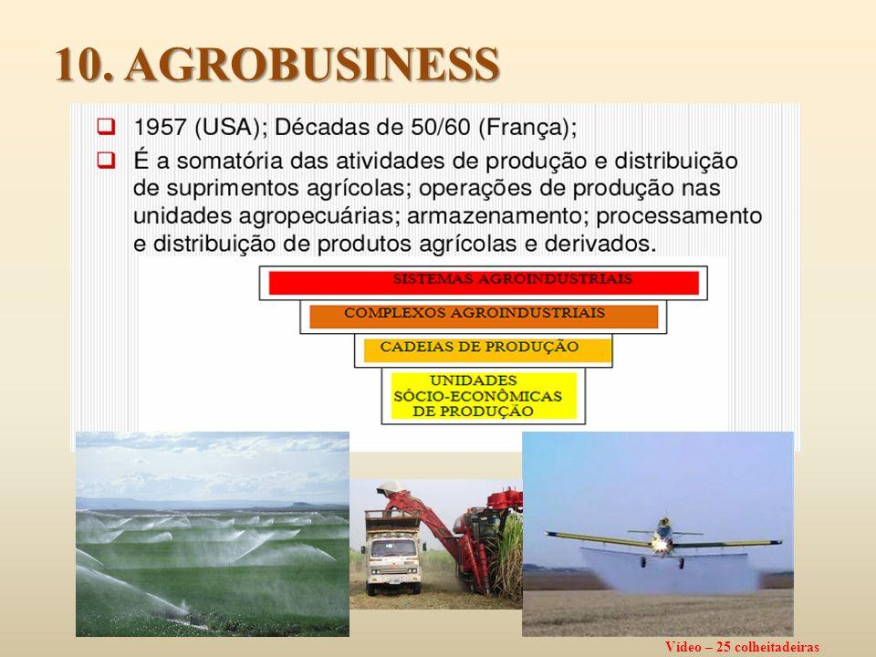 Anos 90 e 2000 FRONTEIRA AGRÍCOLA: Segunda Expansão Expansão baseada em ganhos de eficiência e produtividade e escala) e grande demanda