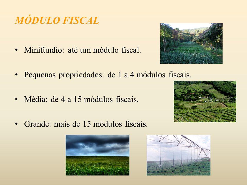 Minifúndio: até um módulo fiscal. Pequenas propriedades: de 1 a 4 módulos fiscais. Média: de 4 a 15 módulos fiscais. Grande: mais de 15 módulos fiscai