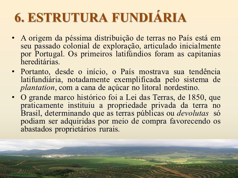 6. ESTRUTURA FUNDIÁRIA A origem da péssima distribuição de terras no País está em seu passado colonial de exploração, articulado inicialmente por Port