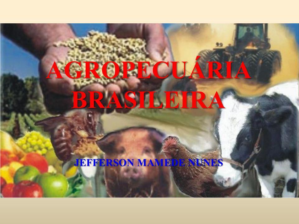AGROPECUÁRIA BRASILEIRA JEFFERSON MAMEDE NUNES