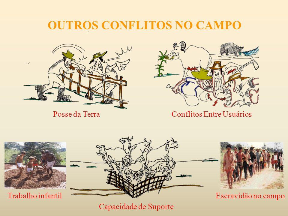OUTROS CONFLITOS NO CAMPO Posse da Terra Conflitos Entre Usuários Capacidade de Suporte Escravidão no campoTrabalho infantil