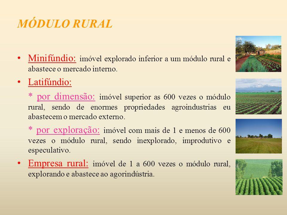 Minifúndio: imóvel explorado inferior a um módulo rural e abastece o mercado interno. Latifúndio: * por dimensão: imóvel superior as 600 vezes o módul
