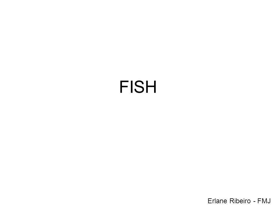 FISH Erlane Ribeiro - FMJ