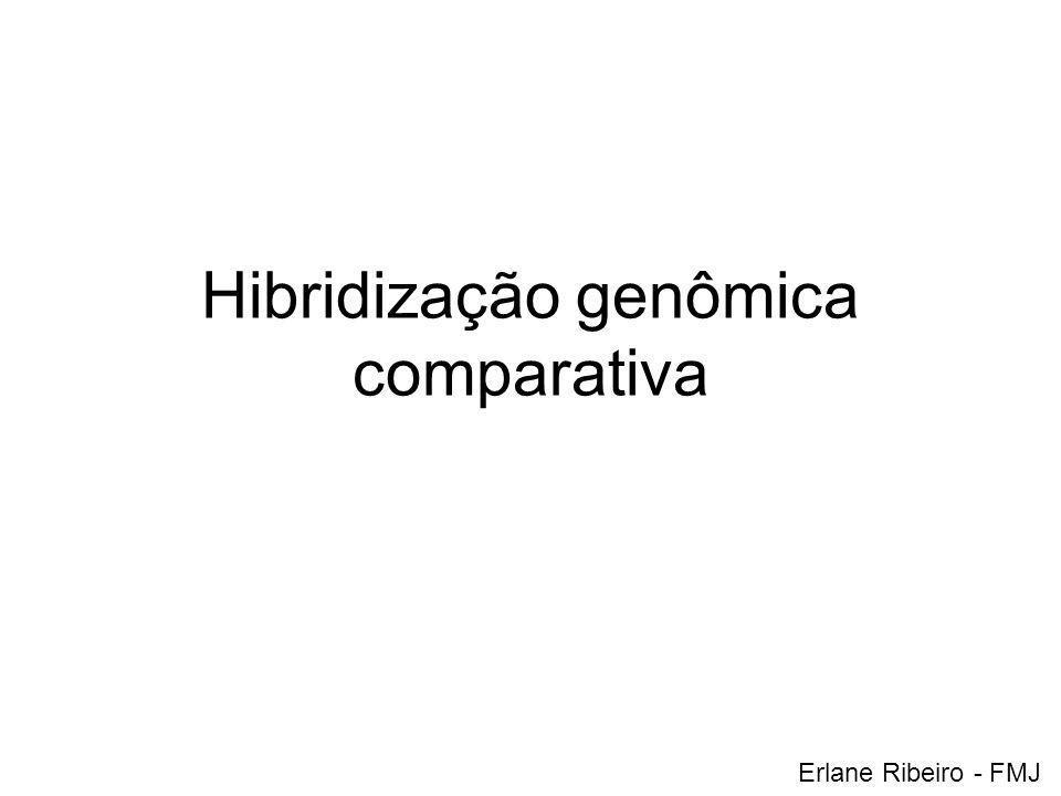 Hibridização genômica comparativa Erlane Ribeiro - FMJ