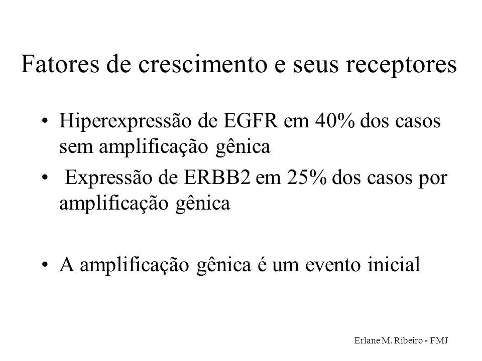 Erlane M. Ribeiro - FMJ Fatores de crescimento e seus receptores Hiperexpressão de EGFR em 40% dos casos sem amplificação gênica Expressão de ERBB2 em