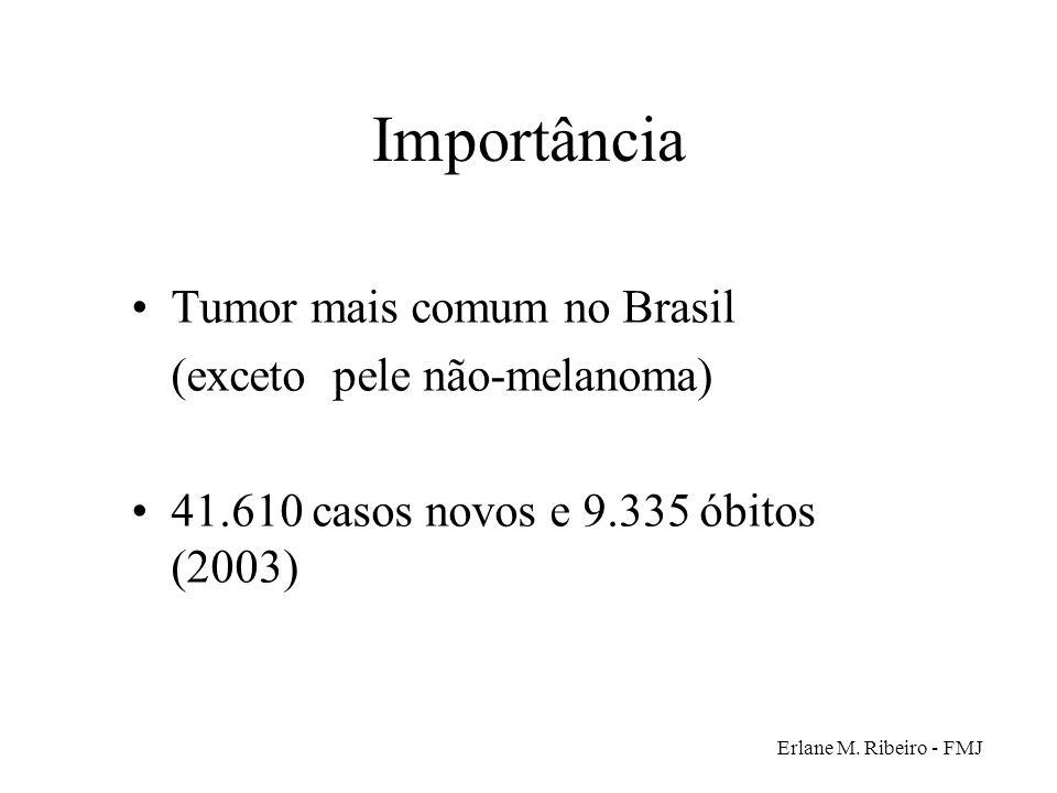 Erlane M. Ribeiro - FMJ Importância Tumor mais comum no Brasil (exceto pele não-melanoma) 41.610 casos novos e 9.335 óbitos (2003)