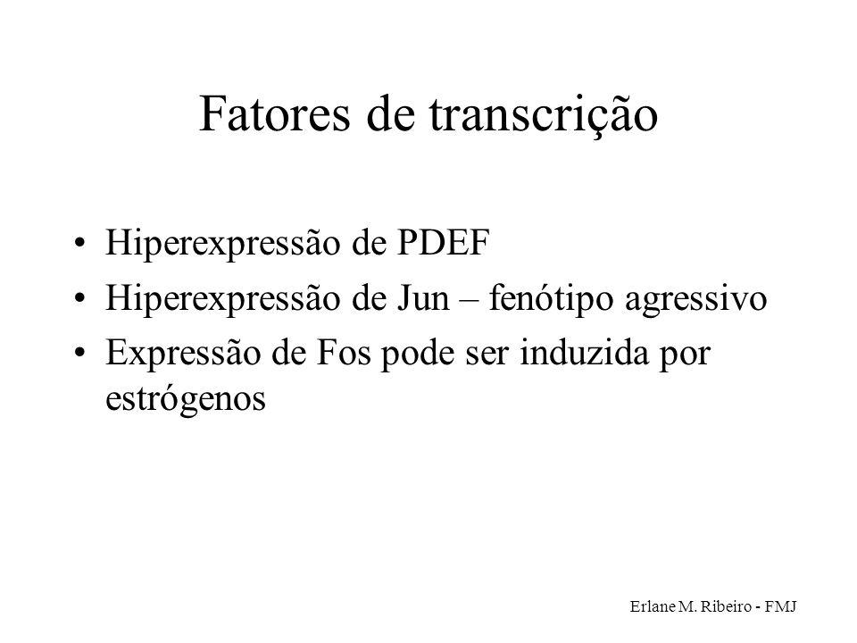 Erlane M. Ribeiro - FMJ Fatores de transcrição Hiperexpressão de PDEF Hiperexpressão de Jun – fenótipo agressivo Expressão de Fos pode ser induzida po