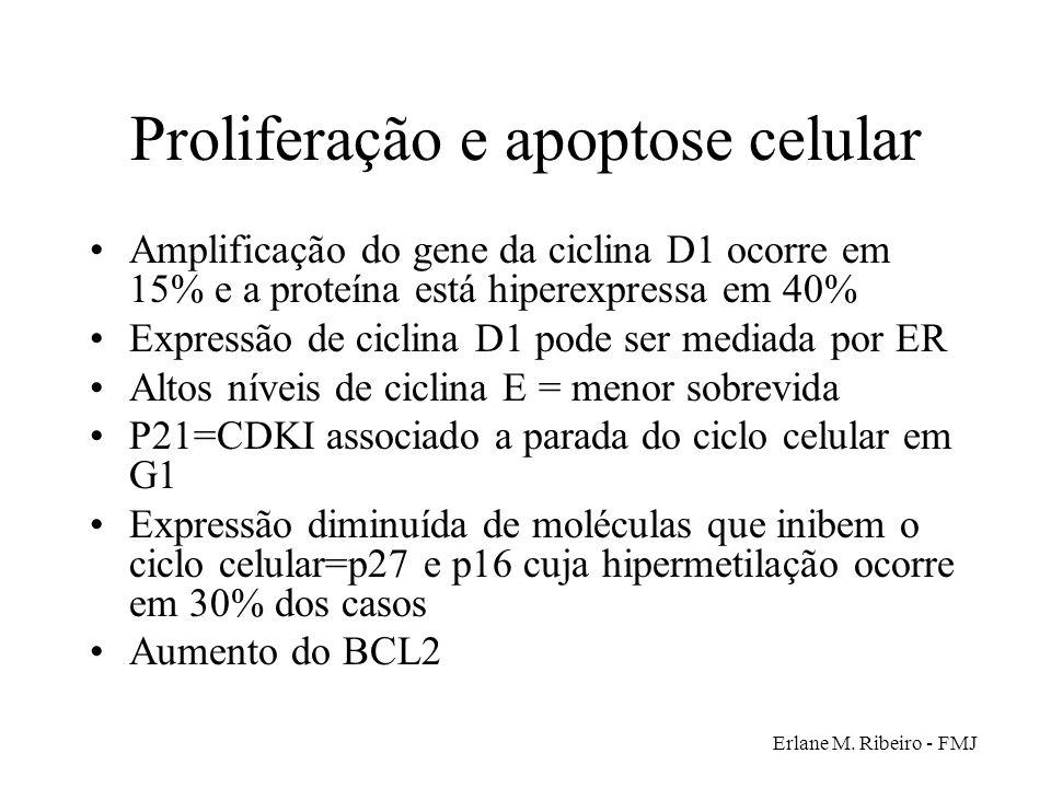 Erlane M. Ribeiro - FMJ Proliferação e apoptose celular Amplificação do gene da ciclina D1 ocorre em 15% e a proteína está hiperexpressa em 40% Expres