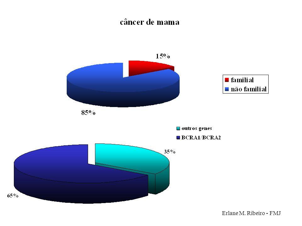 Erlane M. Ribeiro - FMJ
