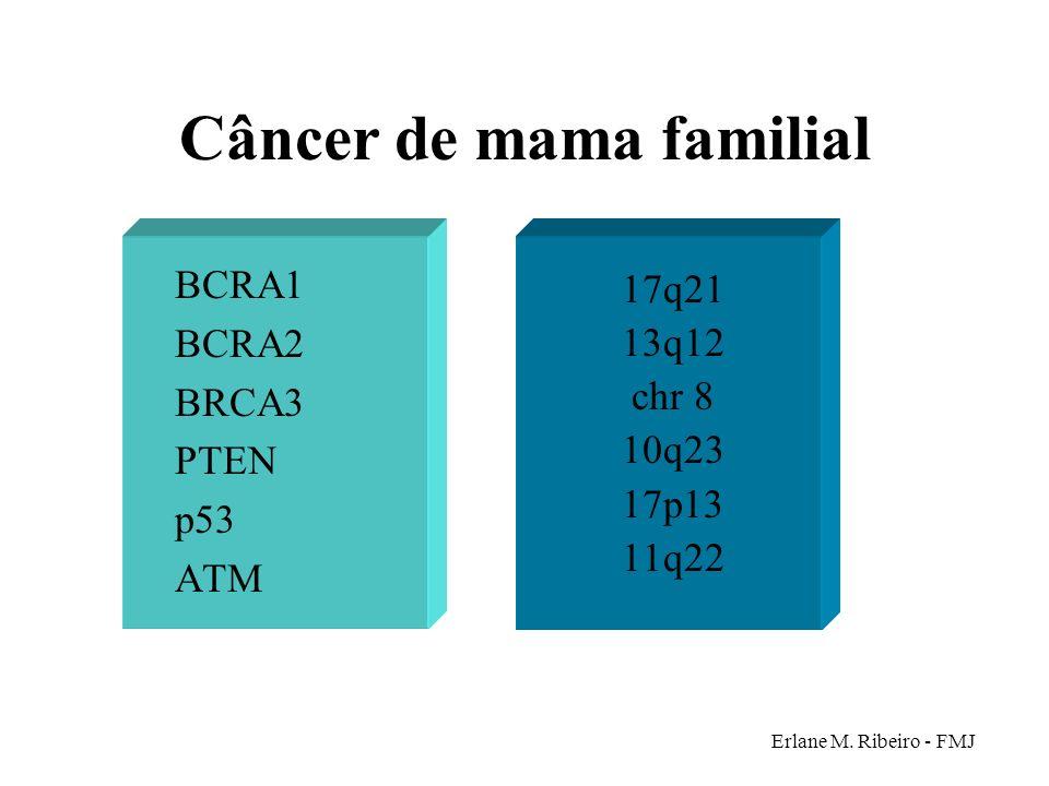 Câncer de mama familial BCRA1 BCRA2 BRCA3 PTEN p53 ATM 17q21 13q12 chr 8 10q23 17p13 11q22