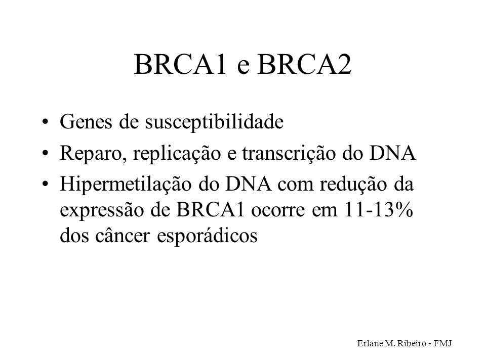 Erlane M. Ribeiro - FMJ BRCA1 e BRCA2 Genes de susceptibilidade Reparo, replicação e transcrição do DNA Hipermetilação do DNA com redução da expressão