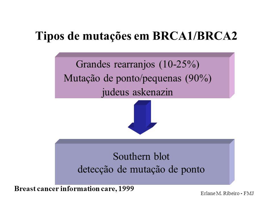 Erlane M. Ribeiro - FMJ Tipos de mutações em BRCA1/BRCA2 Grandes rearranjos (10-25%) Mutação de ponto/pequenas (90%) judeus askenazin Breast cancer in