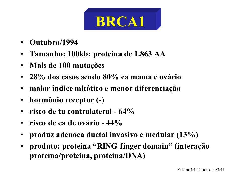 Erlane M. Ribeiro - FMJ BRCA1 Outubro/1994 Tamanho: 100kb; proteína de 1.863 AA Mais de 100 mutações 28% dos casos sendo 80% ca mama e ovário maior ín