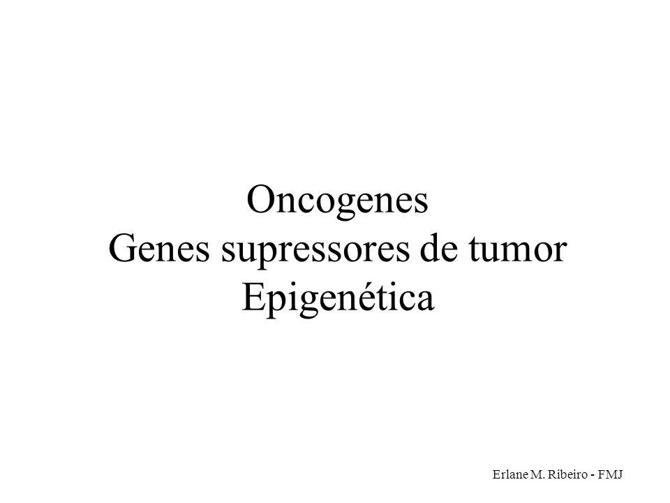 Erlane M. Ribeiro - FMJ Oncogenes Genes supressores de tumor Epigenética