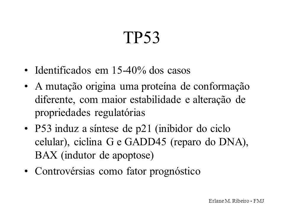 Erlane M. Ribeiro - FMJ TP53 Identificados em 15-40% dos casos A mutação origina uma proteína de conformação diferente, com maior estabilidade e alter
