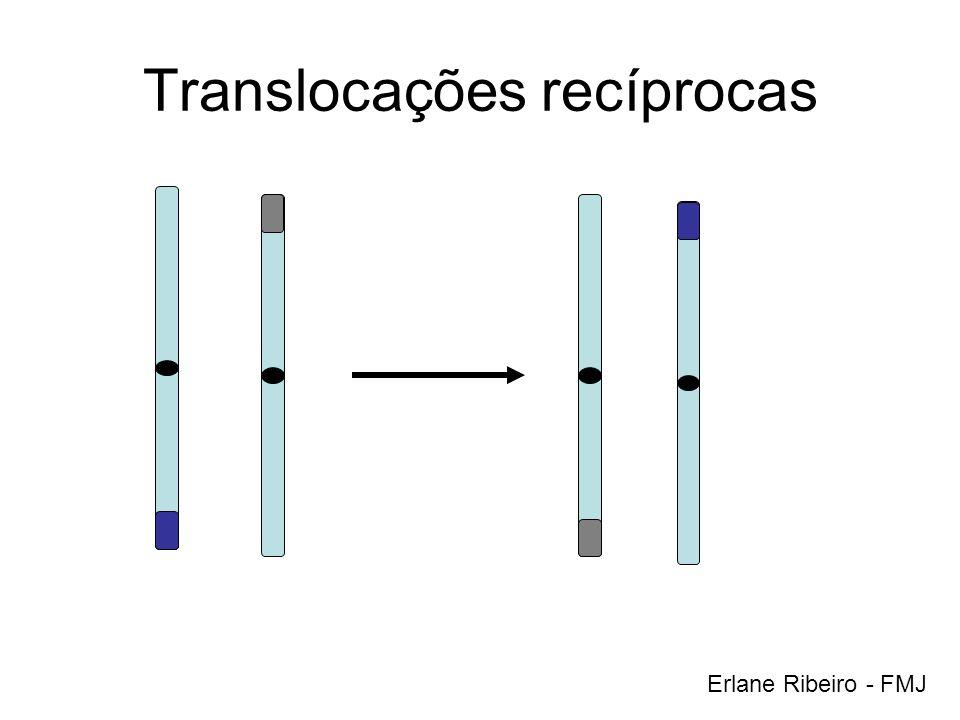 Translocações recíprocas Erlane Ribeiro - FMJ