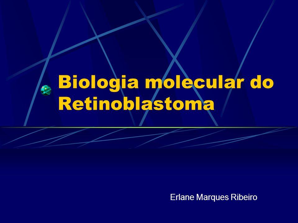 Biologia molecular do Retinoblastoma Erlane Marques Ribeiro