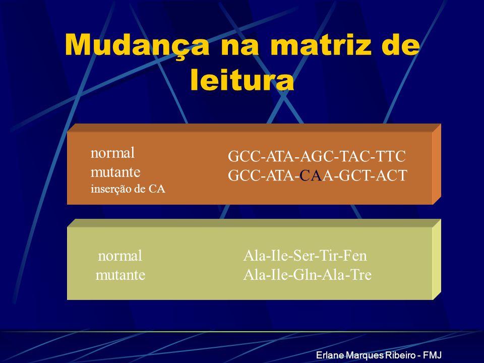 Erlane Marques Ribeiro - FMJ Mudança na matriz de leitura GCC-ATA-AGC-TAC-TTC GCC-ATA-CAA-GCT-ACT Ala-Ile-Ser-Tir-Fen Ala-Ile-Gln-Ala-Tre normal mutan