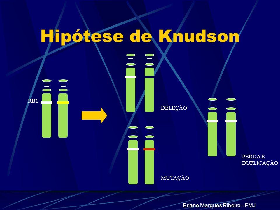 Erlane Marques Ribeiro - FMJ Hipótese de Knudson MUTAÇÃO DELEÇÃO RB1 PERDA E DUPLICAÇÃO