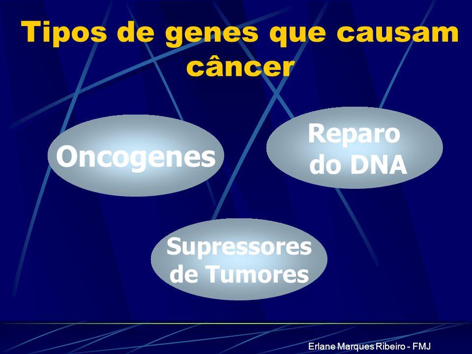 Erlane Marques Ribeiro - FMJ Tipos de genes que causam câncer Oncogenes Supressores de Tumores Reparo do DNA
