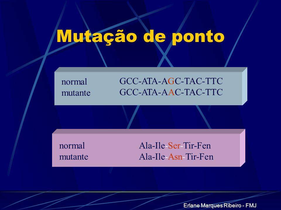 Erlane Marques Ribeiro - FMJ Mutação de ponto normal mutante Ala-Ile-Ser-Tir-Fen Ala-Ile-Asn-Tir-Fen GCC-ATA-AGC-TAC-TTC GCC-ATA-AAC-TAC-TTC normal mu