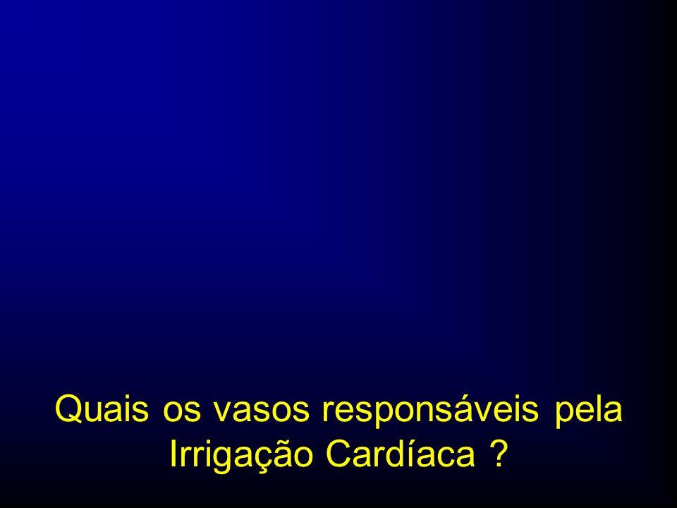 Quais os vasos responsáveis pela Irrigação Cardíaca ?
