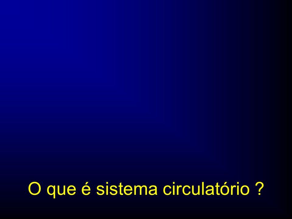 O que é sistema circulatório ?