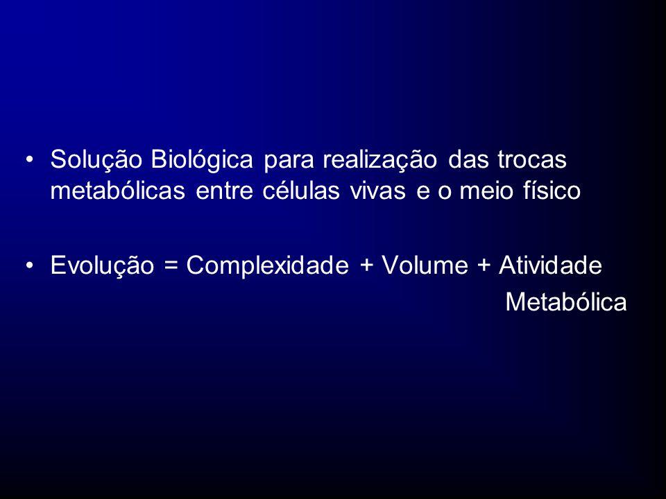 Solução Biológica para realização das trocas metabólicas entre células vivas e o meio físico Evolução = Complexidade + Volume + Atividade Metabólica