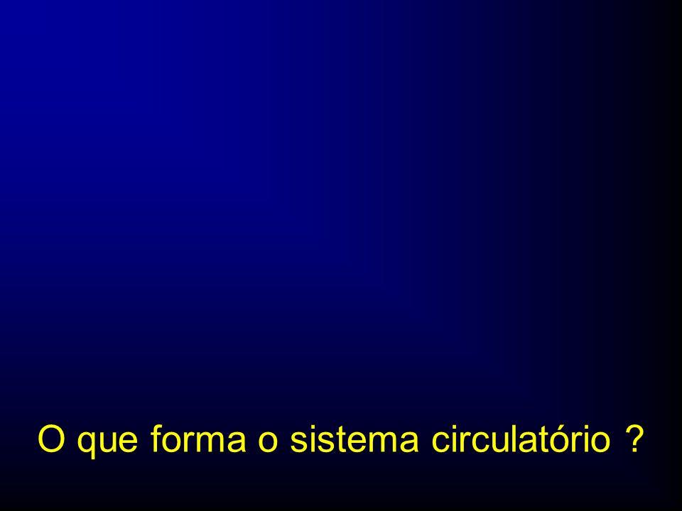 Órgãos Propulsores Musculares: Coração + Solução Aquosa Complexa: Sangue + Rede Tubular: Vasos Sangüíneos