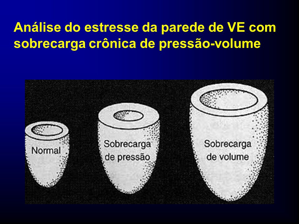 Análise do estresse da parede de VE com sobrecarga crônica de pressão-volume
