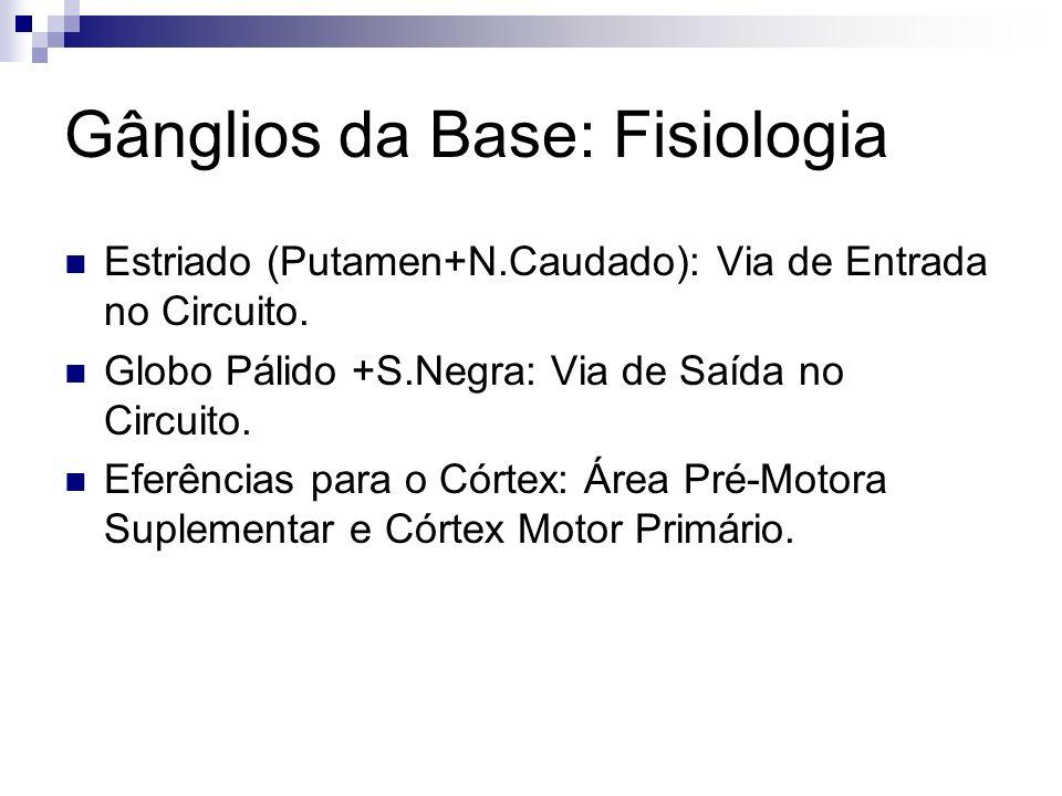 Gânglios da Base: Fisiologia Estriado (Putamen+N.Caudado): Via de Entrada no Circuito.