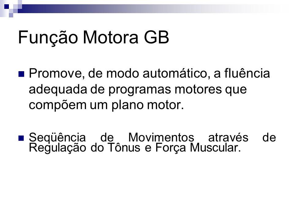 Função Motora GB Promove, de modo automático, a fluência adequada de programas motores que compõem um plano motor.