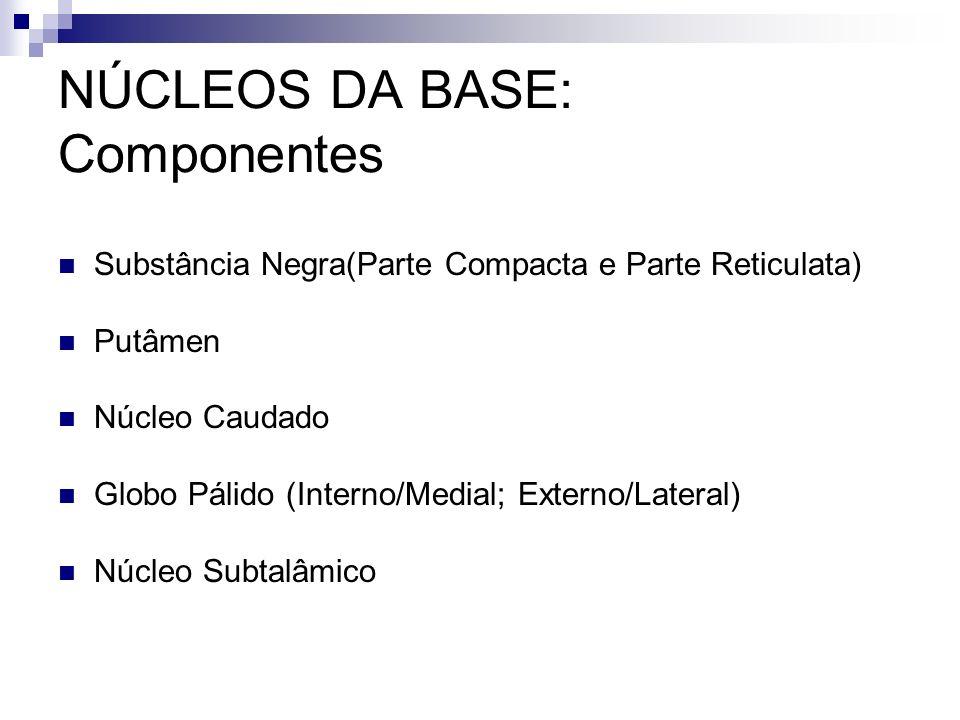 NÚCLEOS DA BASE: Componentes Substância Negra(Parte Compacta e Parte Reticulata) Putâmen Núcleo Caudado Globo Pálido (Interno/Medial; Externo/Lateral) Núcleo Subtalâmico