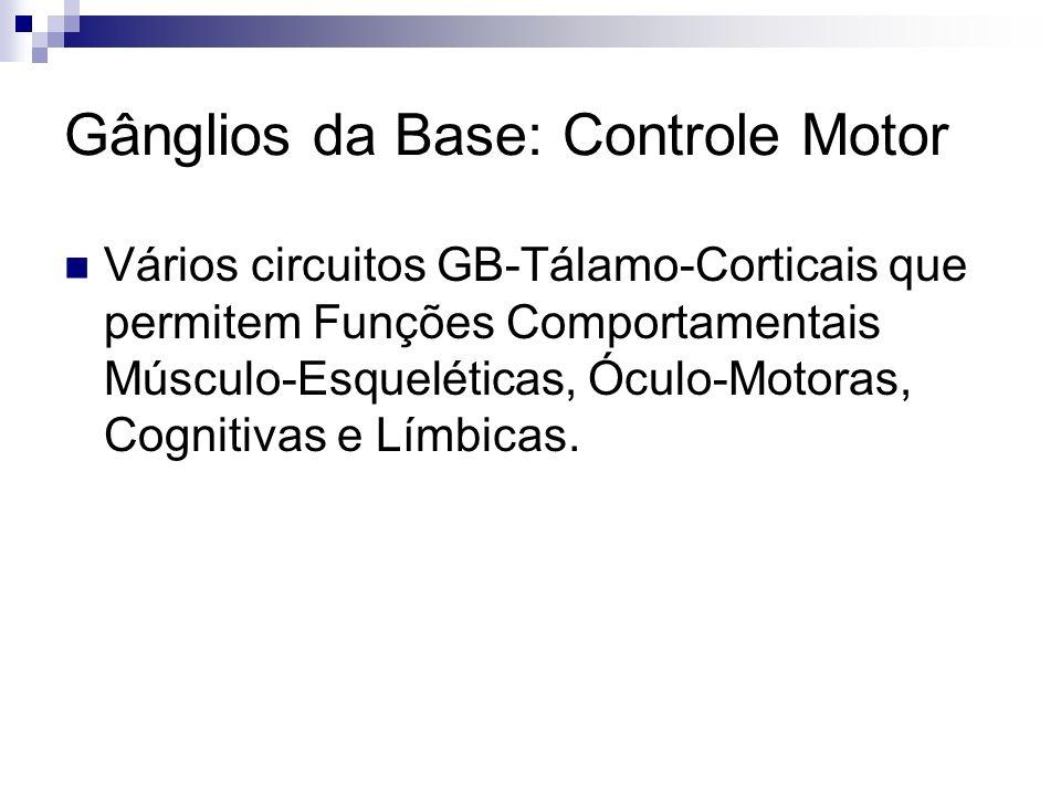 Gânglios da Base: Controle Motor Vários circuitos GB-Tálamo-Corticais que permitem Funções Comportamentais Músculo-Esqueléticas, Óculo-Motoras, Cognitivas e Límbicas.