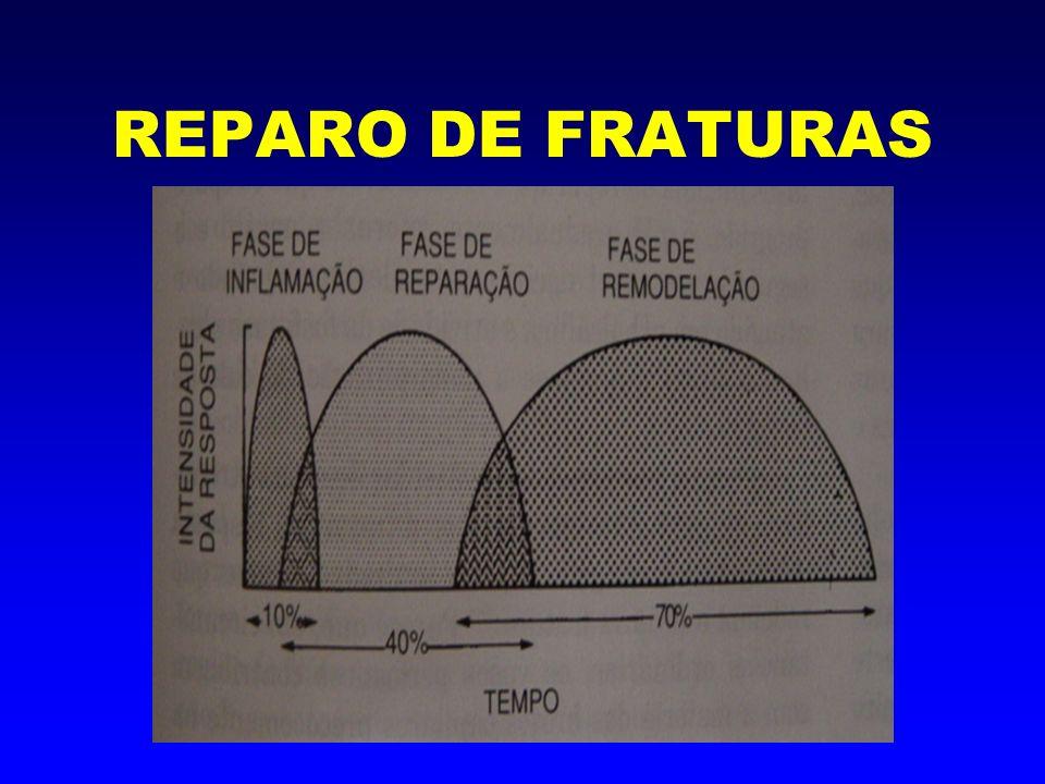 1- Fase da Indução -Hemorragia -Fatores químicos