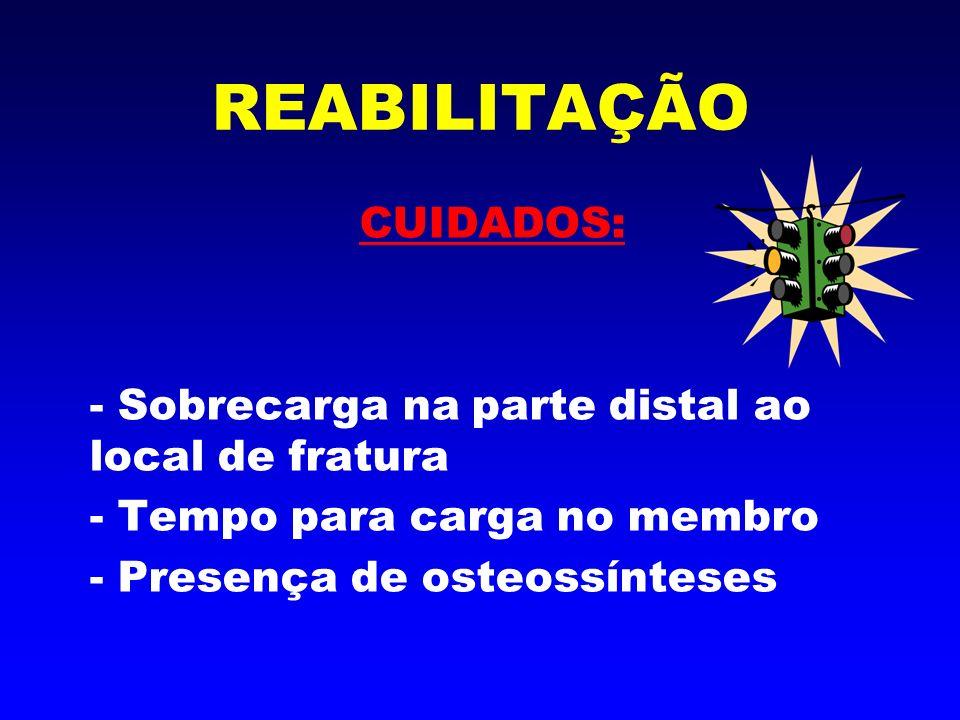 RESULTADOS FINAIS - Remodelação Óssea - Cicatrização - Sintomatologia - Funcionalidade