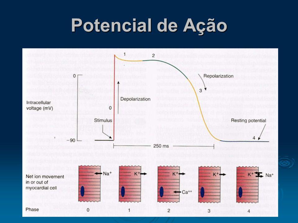 Ciclo Cardíaco 1. Elétrico 2. Bioquímico 3. Mecânico 4. Cinético 5. Sonoro