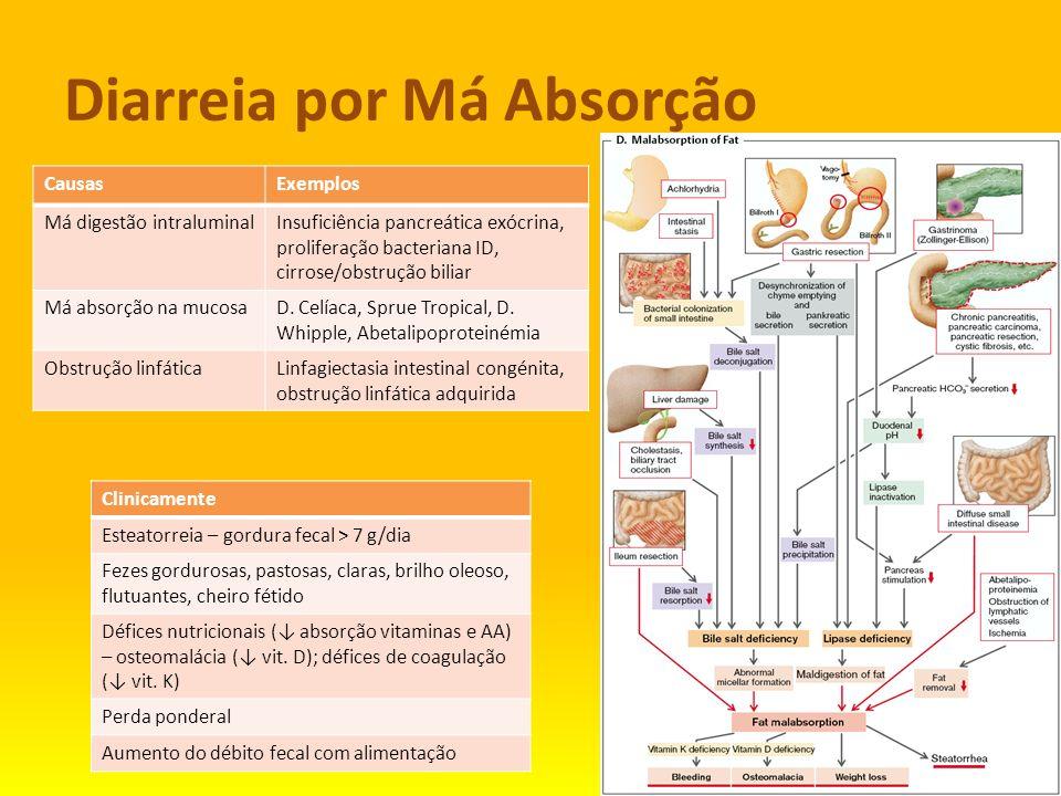 Diarreia por Má Absorção CausasExemplos Má digestão intraluminalInsuficiência pancreática exócrina, proliferação bacteriana ID, cirrose/obstrução bili